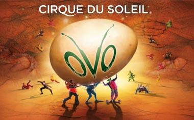 171101_Cirque-du-Soleil_Hamburg_380x235.jpg