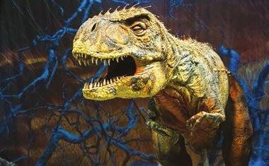 dinosaurier hamburg