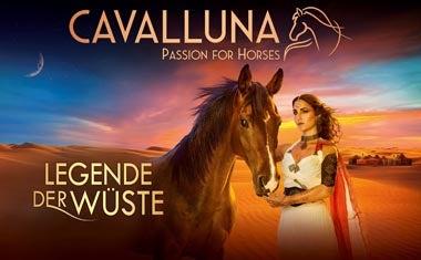 200201_Cavalluna_Homepage_380x235.jpg